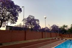 Eastern-Side-of-Pool-2
